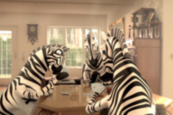 Zebra insect screens Commercial